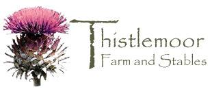 Thistlemoor Art Studio Logo